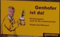 Grüne Gentechnik: Auch hier ist Seehofers Verhalten inkonsequent. Foto: Archiv