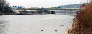 Die zwei Buslinien über die Pfaffensteiner Brücke funktionieren gut. Es gibt allerdings einige Unwägbarkeiten. Foto: wikipedia