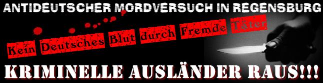 Hetzerisch, gelogen: Propaganda-Logo des Freien Netz Süd.