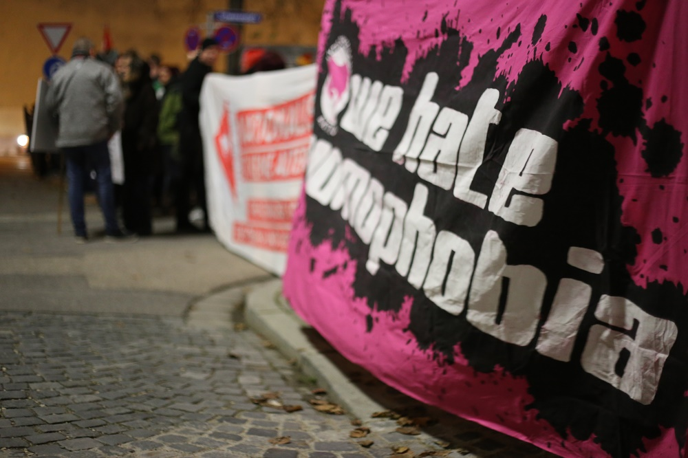 Etwa 80 Gegendemonstranten zeigten gegen die AfD-Veranstaltung Präsenz. Foto: ld.