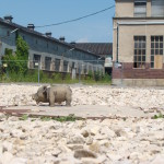 Schon der Verkauf war fragwürdig. Jetzt muss die Stadt wohl auch für die Altlastenentsorgung am Alten Schlachthof das Sparschwein schlachten. Foto: Archiv/ Riechers