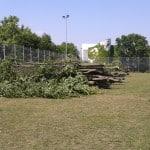 Aufnahmen vom Montag beim Sportgelände am Kaulbachweg: Waren Die Abholzungen nicht genehmigt oder genießt der SSV Jahn Sonderbehandlung?