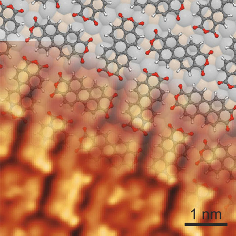 Dynamische Kraft- und Tunnelmikroskopie-Abbildung von PTCDA-Molekülen auf Silber. Die annähernd senkrecht angeordneten Moleküle erscheinen heller als die annähernd waagerechten. Dies ermöglicht Rückschlüsse auf ihren Ladungszustand. Foto: Universität Regensburg