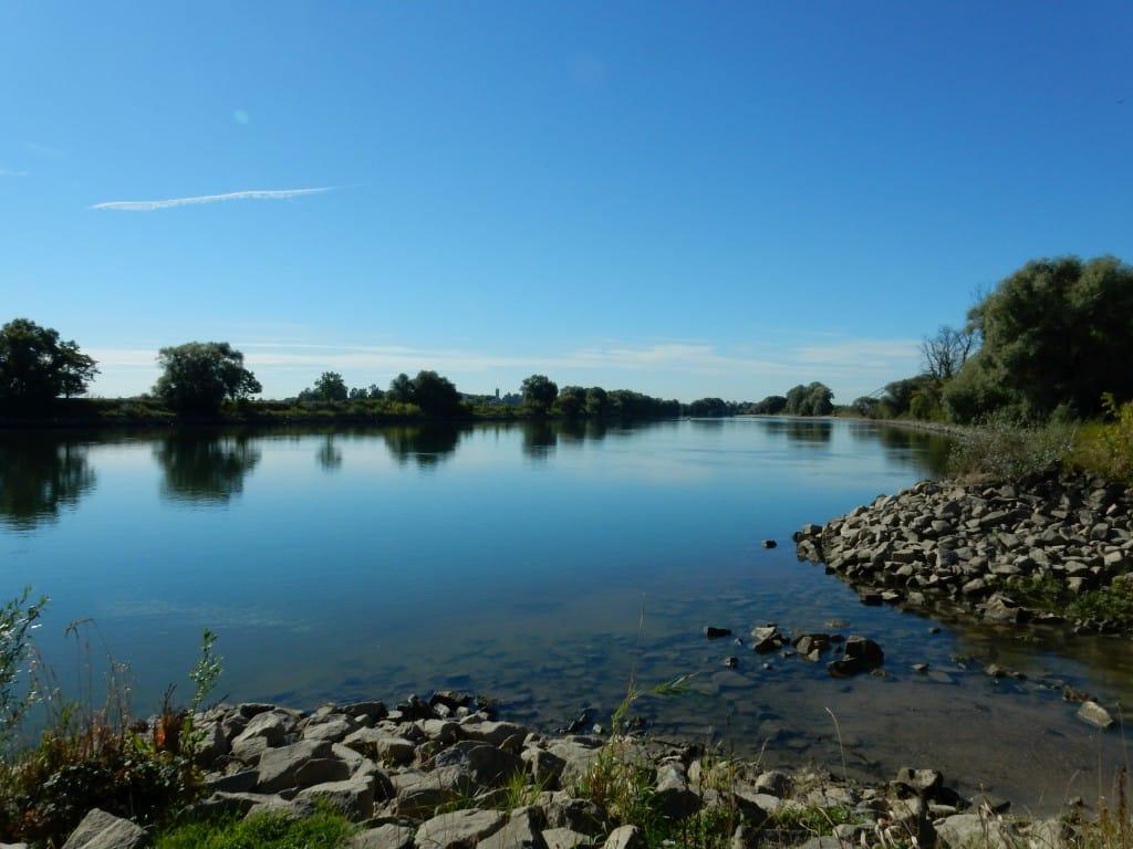 An der Donau gibt es für die ökologische Aufwertung noch viel zu tun, und weitere Ausbaumaßnahmen sind möglichst naturverträglich durchzuführen, wie z. B. bei Reibersdorf, östlich von Straubing, im Zuge des Ausbaus der Wasserstraße Straubing-Vilshofen.
