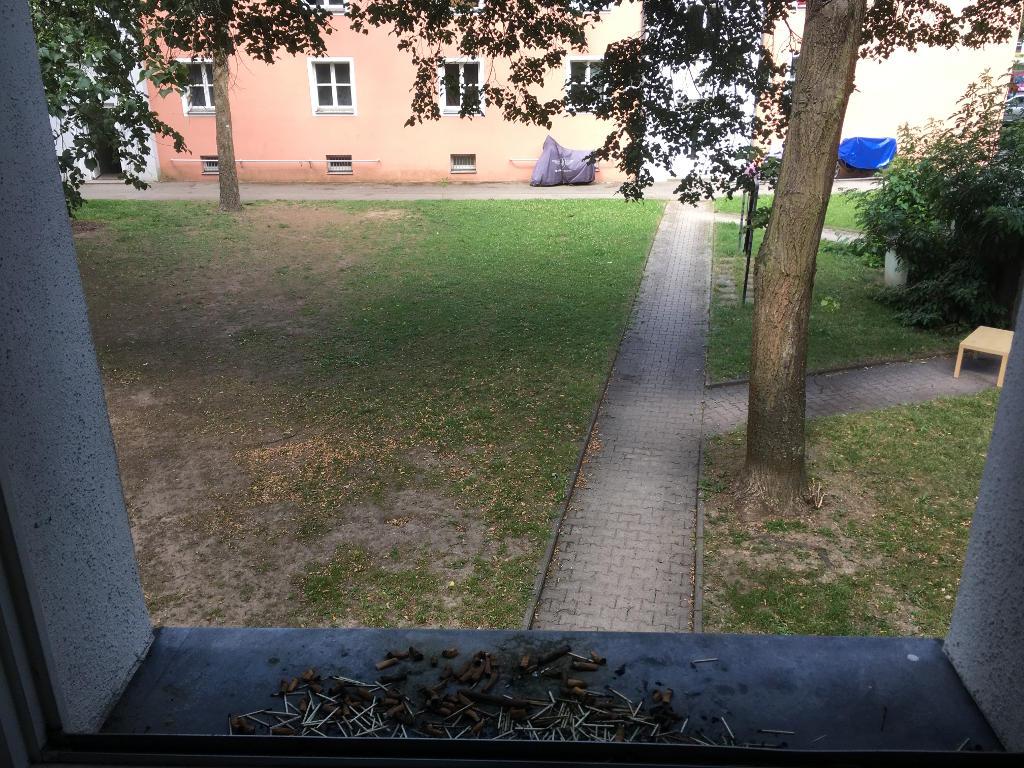 Blick aus der Notunterkunft in der Aussiger Straße. Foto: Archiv